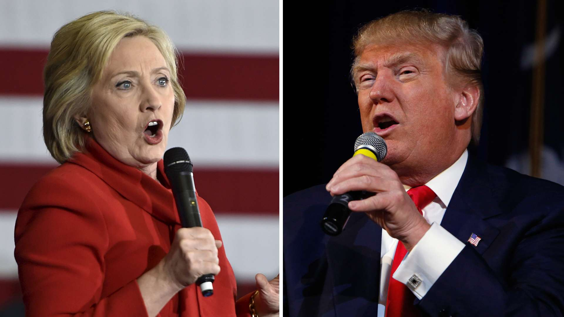 the disagreements between the presidential candidates donald trump and hilary clinton on gun control
